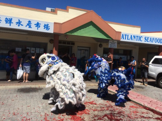 Lion dancing for Chinese new year