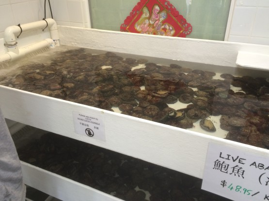 We now stock live abalone every day in a purpose built tank. Abalone caught locally from Perth beaches.